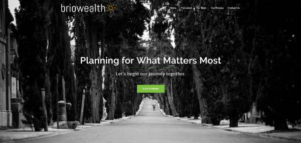 after images of financial advisor websites 2